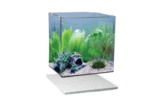 3. Place Frameless Tank on Styrofoam
