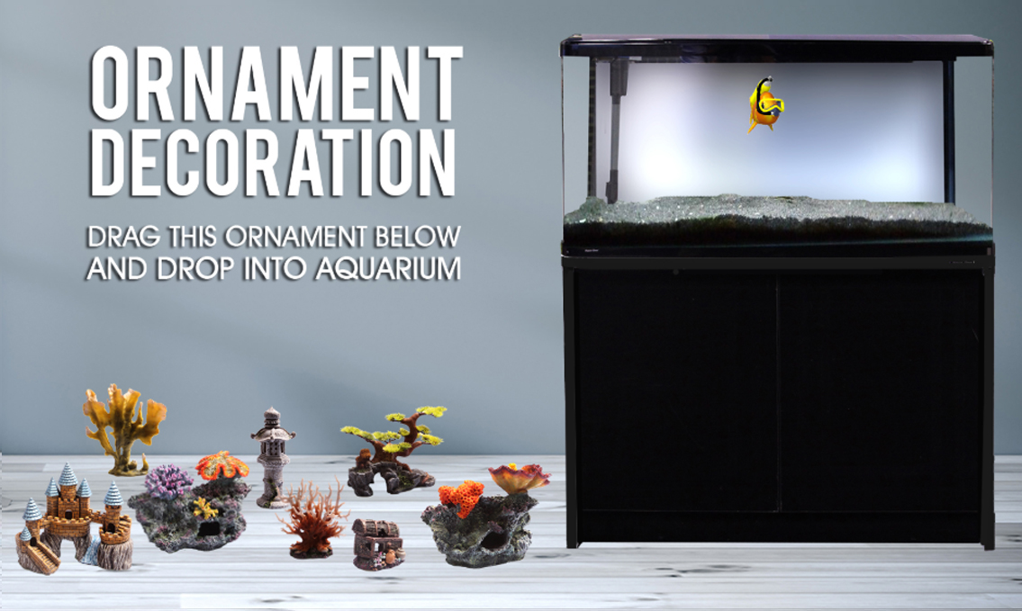 Decorate Your Aquarium