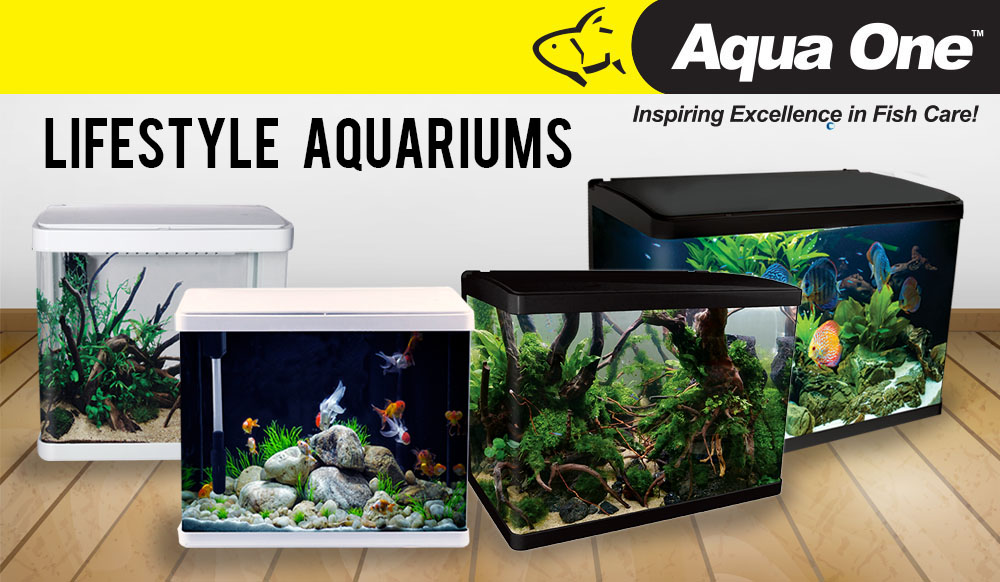 LifeStyle Aquariums