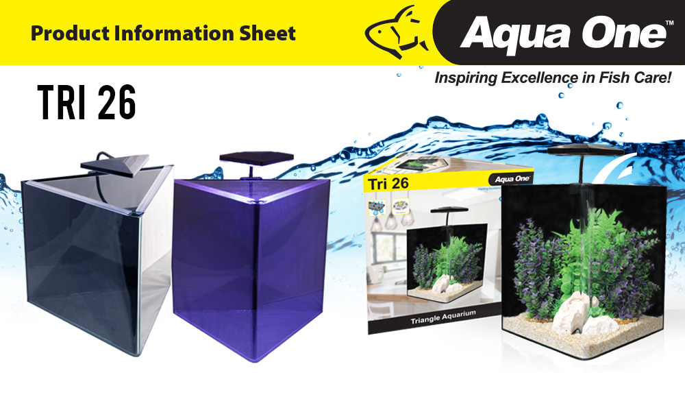Triangle Glass Aquarium