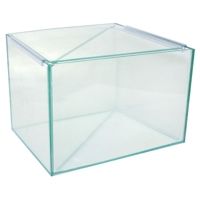 Betta Divided Glass Tank 25Wx20Dx20cm H