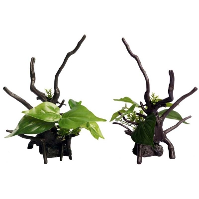 Ecoscape Green Devils Ivy Driftwood