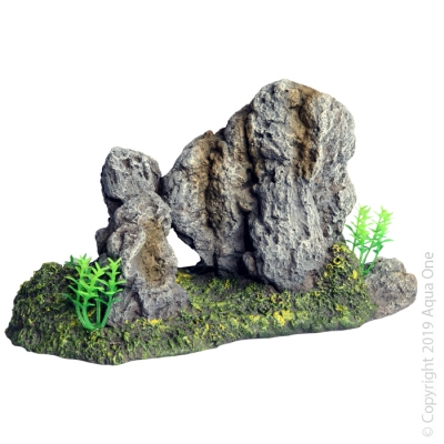 Twin Rock with Plant