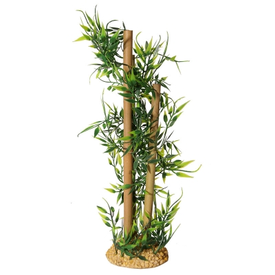 Tall Bamboo with Leaves