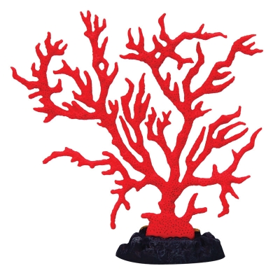 Copi Coral Red Gorgonian