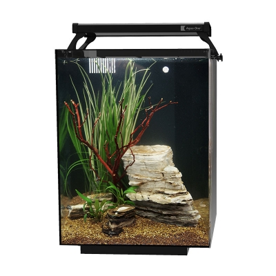 AquaFlora 42 Glass Planted Aquarium