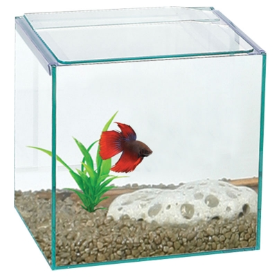 Betta Cube Square Glass Tank 16x16x16cm