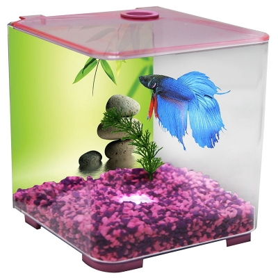 Betta Tank - Style Acrylic 3L With Light (Pink)