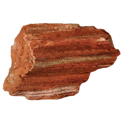 Petrified Wood Medium
