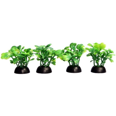Ecoscape Foreground Green Lobelia Pack of 4