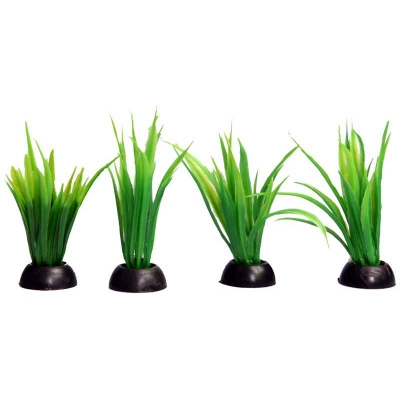 Ecoscape Foreground Green Lilaeopsis Pack of 4