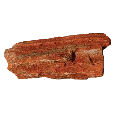 Petrified Wood Small