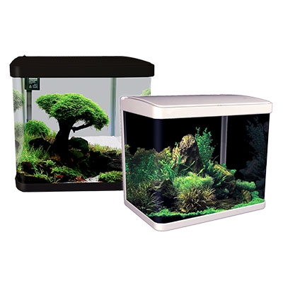 LifeStyle 29 Complete Glass Aquarium