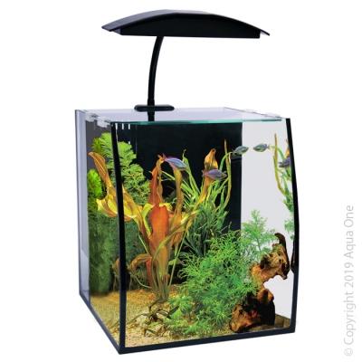 Arc 16 Aquarium