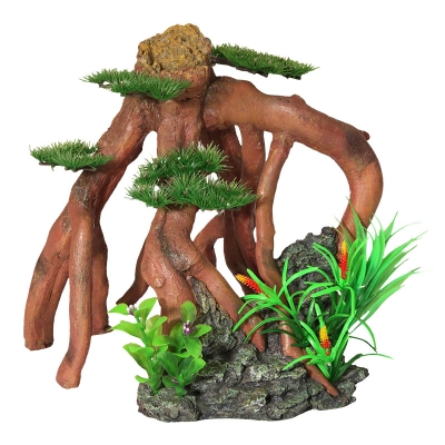 Mangrove Roots with Bonsai and Plastic Plants