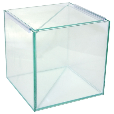 Betta Divided Glass Tank 20Wx20Dx20cm H