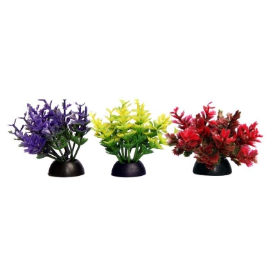 Ecoscape Foreground Catspaw Pack of 4